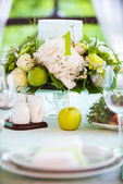 Summer table setting in green with apple — Stock Photo