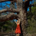 Beautiful lady and mighty tree — Stock Photo #55908687