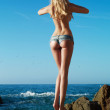 Sexy blonde at the sea — Stock Photo #74352559