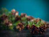 Pine bough with pine cones on black wood background — Stock Photo