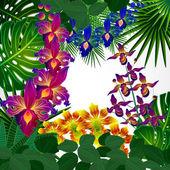 Tropical flowers and leaves. Floral design background. — ストックベクタ