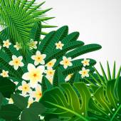 Eps10 Floral design background. Plumeria flowers and tropical le — 图库矢量图片
