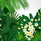 Eps10 Floral design background. Plumeria flowers and tropical le — Stock vektor