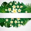 Eps10 Floral design background. Plumeria flowers and tropical le — Stock Vector #53391159