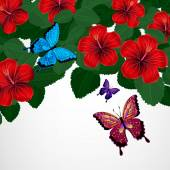 Floral design background. Hibiscus flowers with butterflies. — Stockvektor