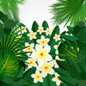 Eps10 Floral design background. Plumeria flowers and tropical le — Stok Vektör