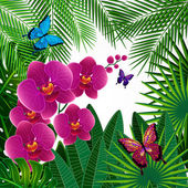 Floral design background. Orchid flowers with butterflies. — Wektor stockowy