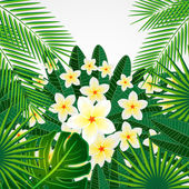 Eps10 Floral design background. Plumeria flowers and tropical le — Wektor stockowy