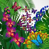 Floral design-hintergrund. tropische orchidee blüten, blättern und bu — Stockvektor