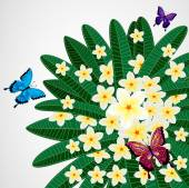 Eps10 Floral design background. Plumeria flowers with butterflie — Vector de stock