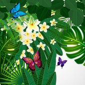Floral design background. Plumeria flowers, tropical leaves and  — Stock Vector