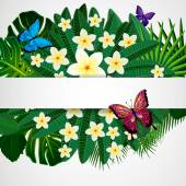 Floral design background. Plumeria flowers, tropical leaves and  — Vector de stock