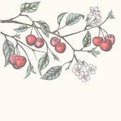 Sfondo vintage cherry — Vettoriale Stock