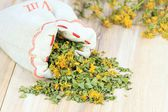 Dry herb St. Johns wort — Stock Photo