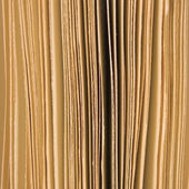 Slightly open book pages closeup background sepia, large vertical macro studio shot — Stock Photo