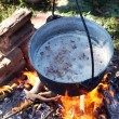 Pot on the fire — Stock Photo #78706920