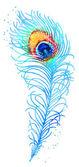 Vector watercolor peacock feather — Stock Vector