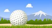 Golf ball on green grass. Vector — Stock Vector