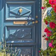 Blue door — Stock Photo #53737141