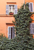 Traditional house Rome Italy — Stock Photo