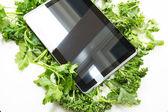 Herbal Tablet PC — Stockfoto