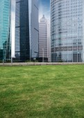 The lawn in the city — Stock Photo