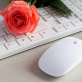 The mouse and keyboard — Stock Photo