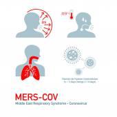 MERS symptoms — Stock Vector