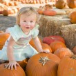 Adorable Baby Girl Holding a Pumpkin at the Pumpkin Patch — Stock Photo #54417167