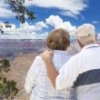 Happy Senior Couple Looking Out Over The Grand Canyon — Stock Photo #54417847