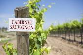 Cabernet Sauvignon Sign On Vineyard Post — Stock Photo