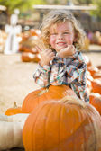 Cute Little Boy Gives Thumbs Up at Pumpkin Patch — Stock Photo
