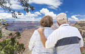 Happy Senior Couple Looking Out Over The Grand Canyon — Stock Photo