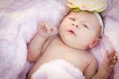 Beautiful Newborn Baby Girl Laying in Soft Blanket — Foto de Stock