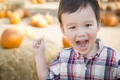 Mixed Race Young Boy Having Fun at the Pumpkin Patch — Stock Photo