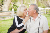 Affectionate Senior Couple Portrait At The Park — Fotografia Stock