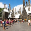 Постер, плакат: Visitors in the Harry Potter area at Universal Studios Islands o