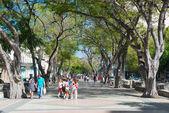People at street of Paseo del Prado — Stok fotoğraf
