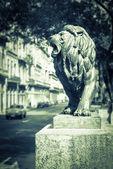 El Prado street, Havana landmark — Stok fotoğraf