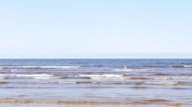 Martılar uçan ile deniz manzarası — Stok video