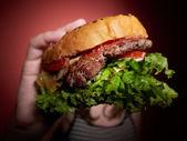 Teen girl eating a burger — Stock Photo