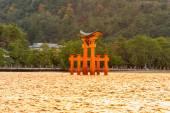 Миядзима Тории ворота в Японии — Стоковое фото