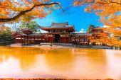 Byodo-in Temple in Kyoto — Zdjęcie stockowe