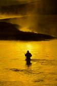 Man Fishing in River Early Morning — Foto Stock