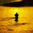 Man Fishing in River Early Morning — Stock Photo #54328141