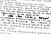 New Testament Scripture Quote Living Bread — Stock Photo