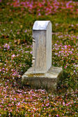 Spring Gravestone with Blossoms — Stock Photo