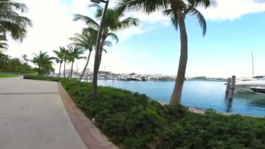 Yachts view at Miami Beach marina — Stock Video