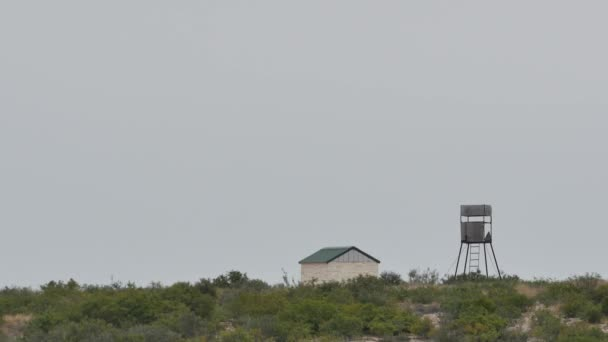 Hunting lookout tower — Vidéo