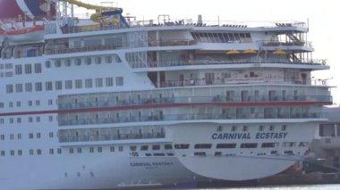 Carnival Ecstacy Port Miami — Stock Video